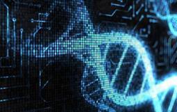细胞遗传学